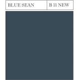 B 11 BLUE SEAN